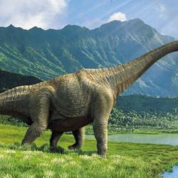 En Torres del Paine hallan el dinosaurio mas grande descubierto en Chile