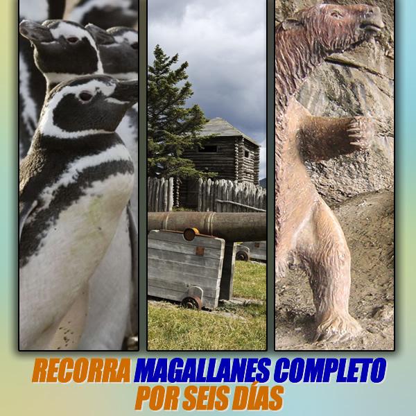 Magallanes Completo Torres del Paine Glaciares Pinguinos