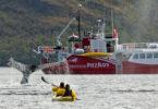 Programa en Busca de las Ballenas en el Estrecho de Magallanes